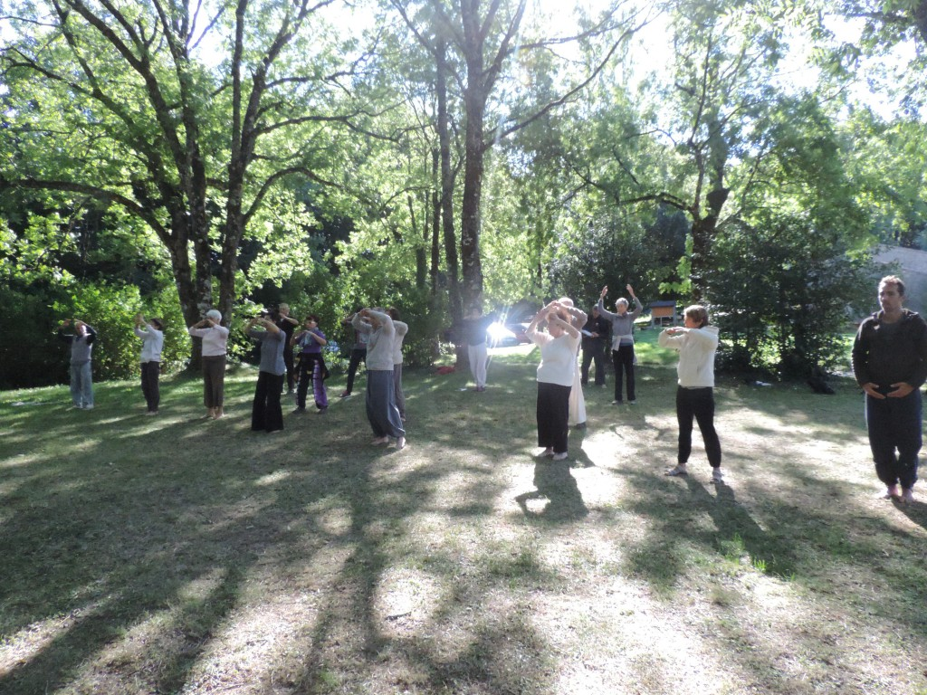 stage-qi-gong-toulouse